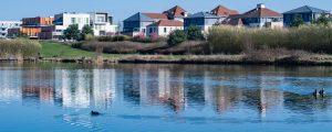 Photographie de l'étang aux grives dans le parc du Génitoy (Bussy Saint-Georges). Au loin, sont visibles des logements