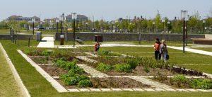 Photographie du Jardin du partage des savoirs dans le Parc du Génitoy (écoquartier Le Sycomore)