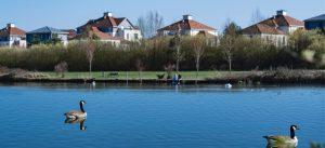 Photographie de l'étang des grives dans le parc du Génitoy (Bussy Saint-Georges)