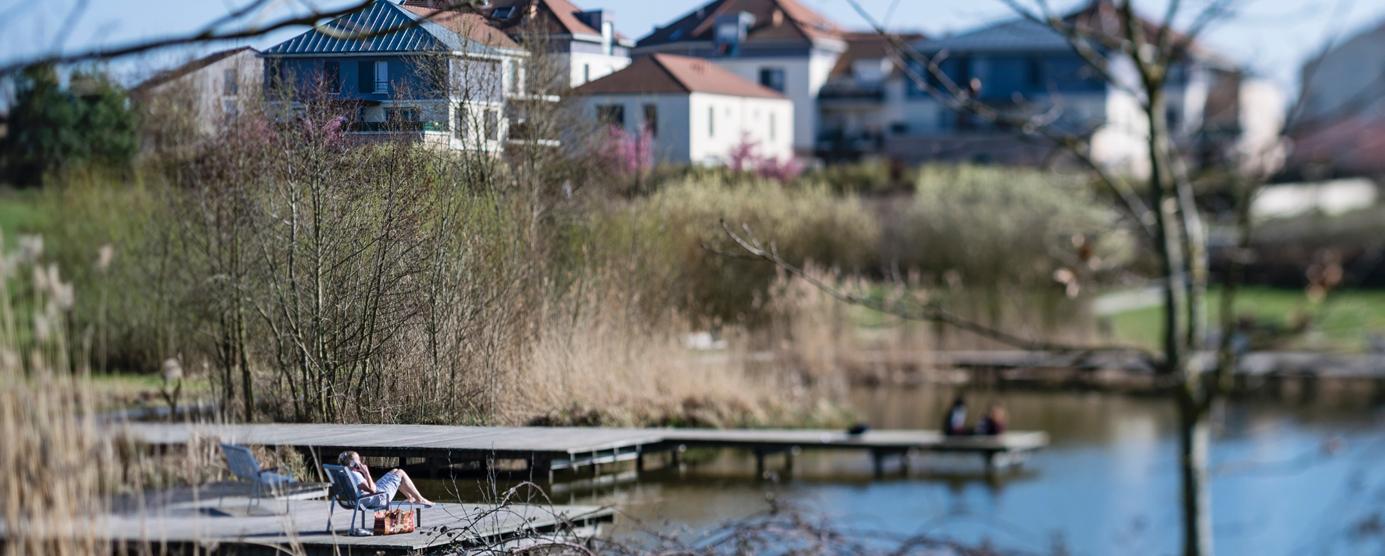 Photographie de l'étang des Grives dans le parc du Génitoy (centre-ville de Bussy Saint-Georges)