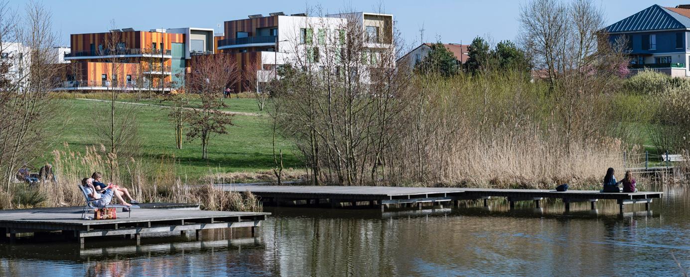 Photographie de l'étang des Grives dans le parc du Génitoy à Bussy Saint-Georges
