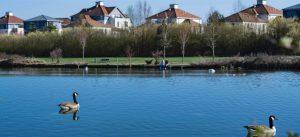 Logements et lac donnant sur le parc du Génitoy