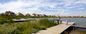 Photographie de l'Eantg des Grives, dans le Parc du Génitoy, situé dans le centre ville de Bussy Saint-Georges