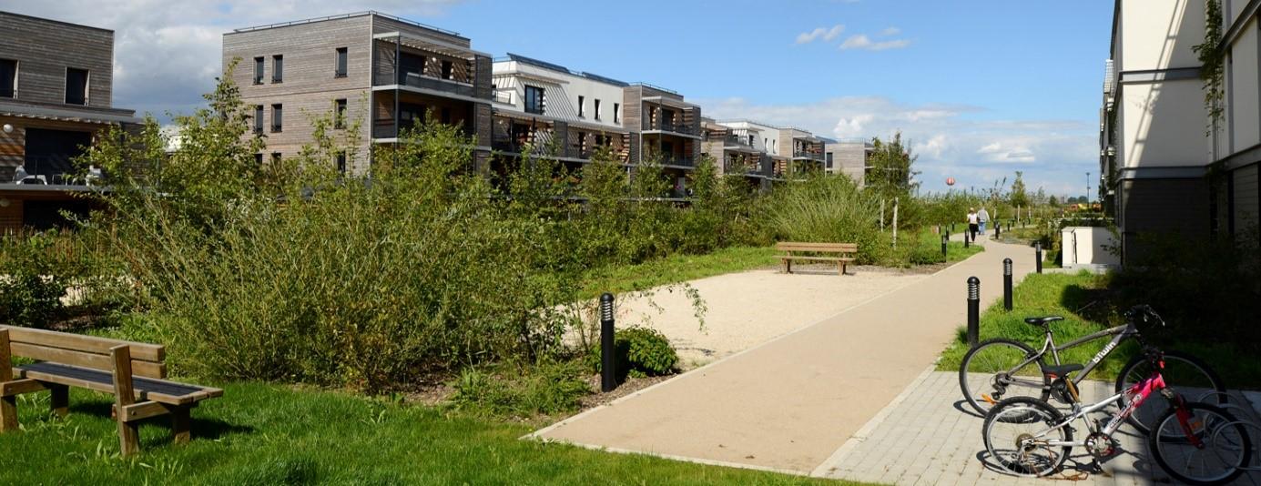 Square situé entre les programmes de logements VG'TAL et les vergers du Bicheret dans l'écoquartier de Montévrain