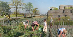 Ecoquartier de Montévrain : Avant-projet coeur agro-urbain (parcours Découverte)