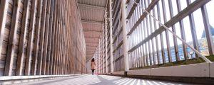 Couloirs en bois du gymnase de la Haute Maison à la Cité Descartes