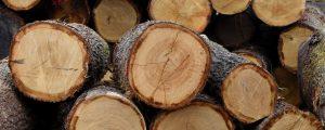 Photographie d'une découpe de bois : bois coupe scierie du Vaudois à Rumilly-les-Vaudes (10) à coté de Troyes